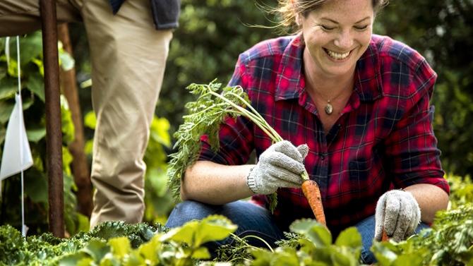 3 bienfaits du jardinage sur la santé